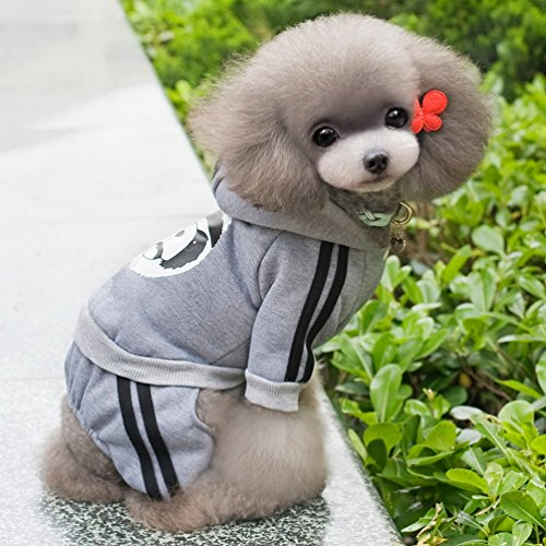Pegasus Dick Warm Panda Hoodies Hund Jumpsuits Fleece Sweatshirt Fashion, für kleine Hunde/Katzen - 7