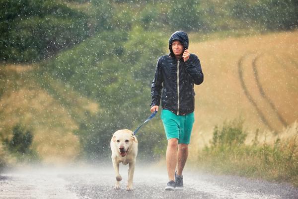 Hundespaziergang bei Regen muss trotzdem sein