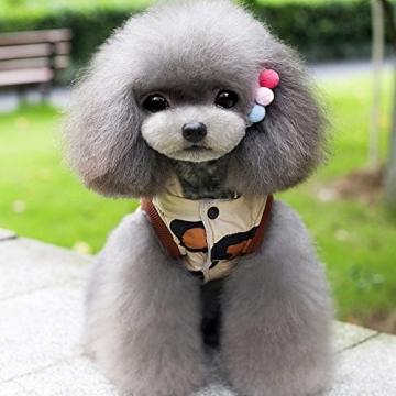 Chinatera Winter Hund Katze Hoodie Jacke Mantel Haustier Kleidung (8#) - 4