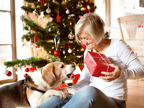 Weihnachtsartikel für Hunde - Senior packt mit dem Hund ein Hundegeschenk aus