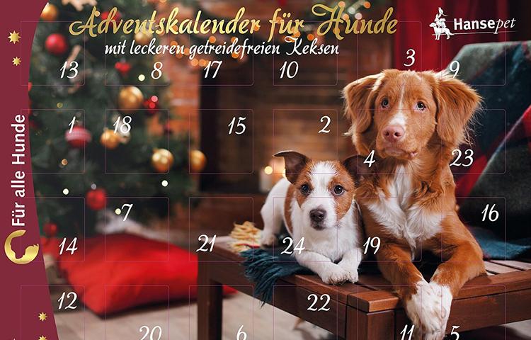 Hundeweihnachtskalender jetzt online kaufen auf weihnachten.spass-fuer-den-hund.de