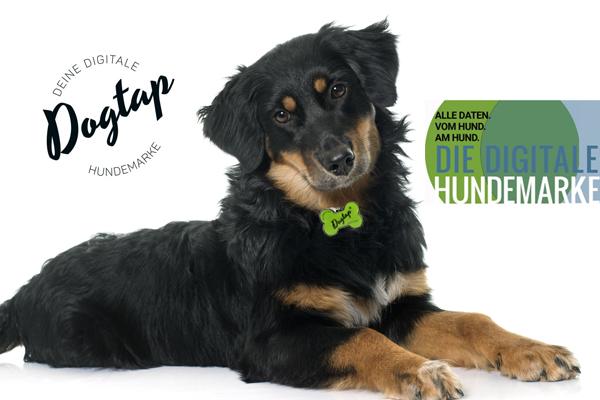 Die digitale Hundemarke Dogtap in Knochenform jetzt auf Hundemantel-Mode.de