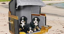 Gestreifter Hundestrandkorb als Hundeschlaftplatz für große Hunde - Jetzt Hundestrandkorb auf Hundemantel-Mode.de kaufen