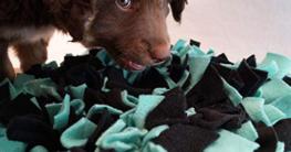 Schnüffelteppich für Hunde jetzt auf Hundemantel-Mode.de kaufen