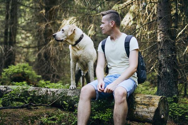 Hundebesitzer geht mit seinem Hund im Wald spazieren - Hundeleine auf Hundemantel-Mode.de